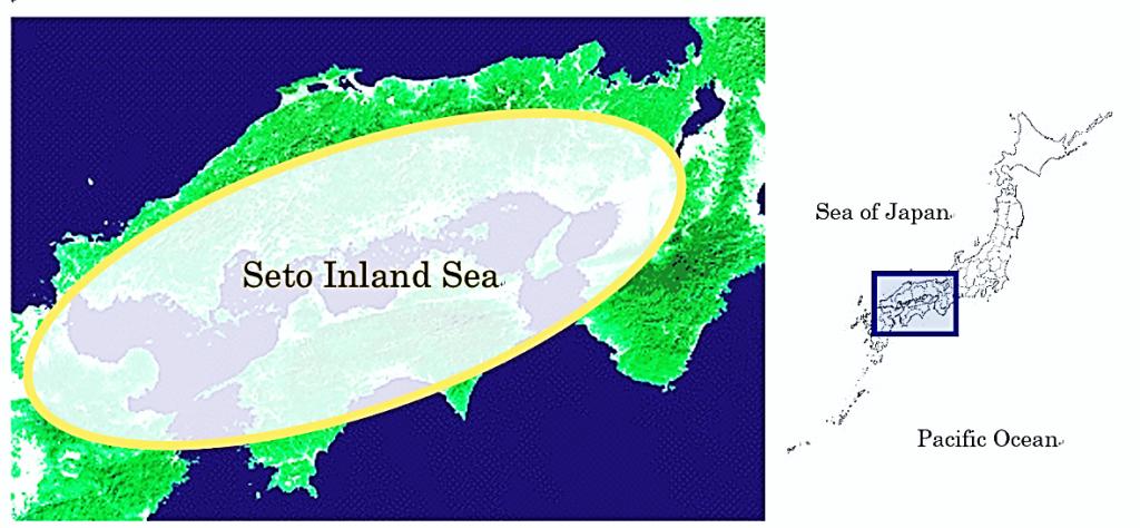 瀬戸内海は西日本に位置し、いわゆる「閉鎖性海域」です。月の引力がもたらす1日2回の海の干満によって大洋から新鮮な海水が流れ込んできますが、自然の循環を保つ上では人間社会の側の調整が絶えず求められています。