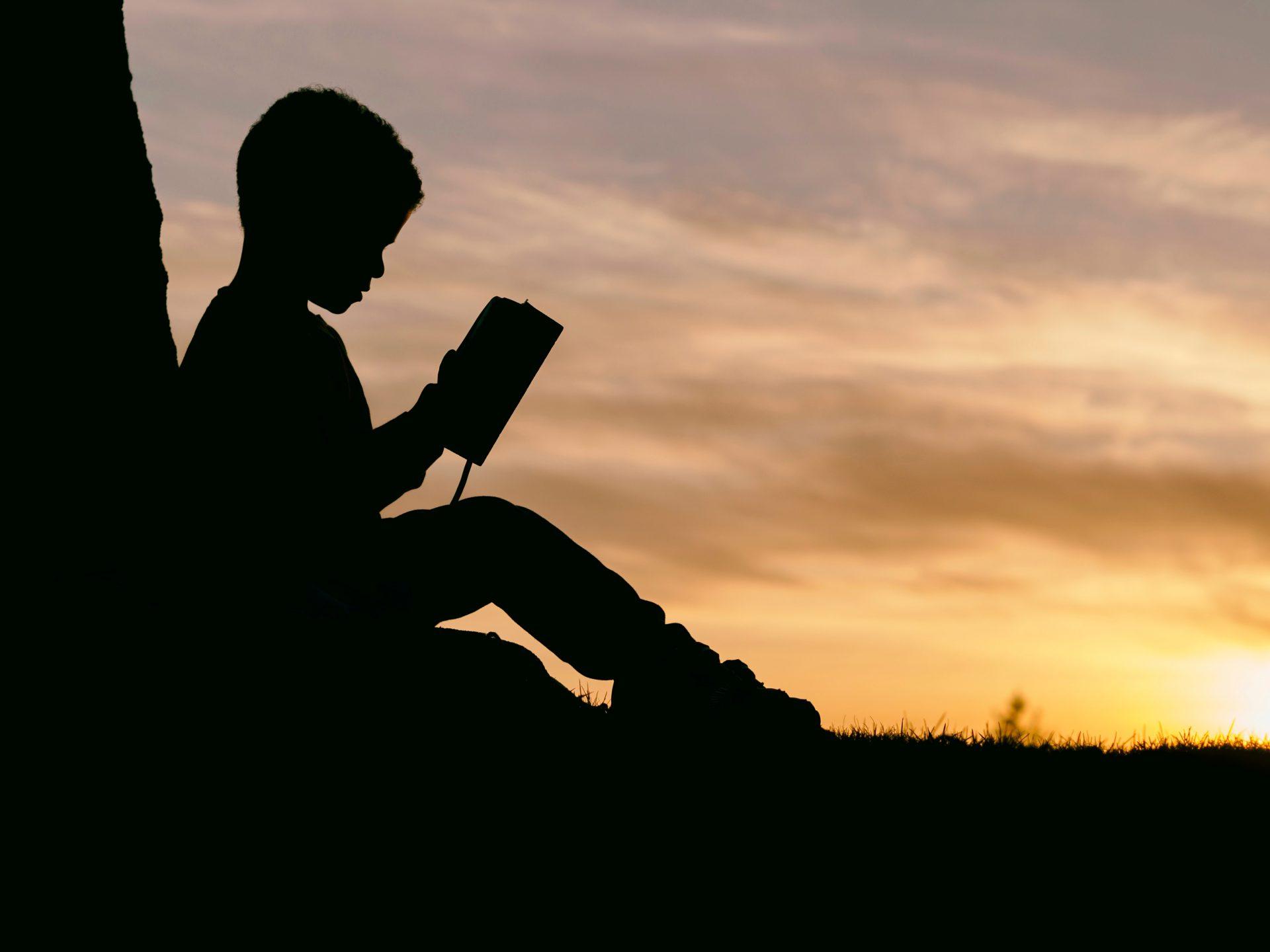 夕日が差し込む木陰で読書をする少年の写真
