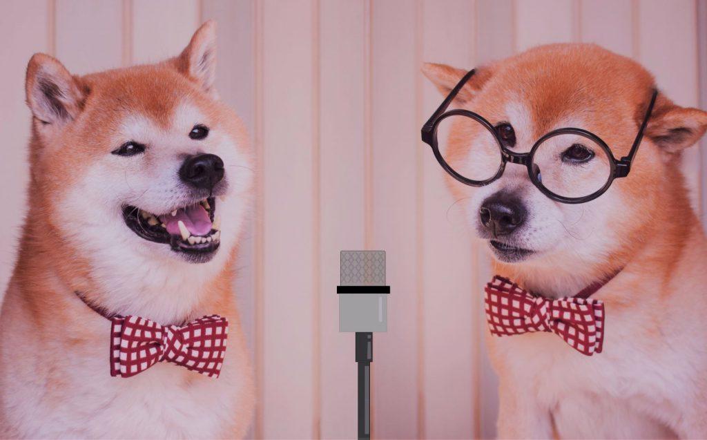 漫才する犬