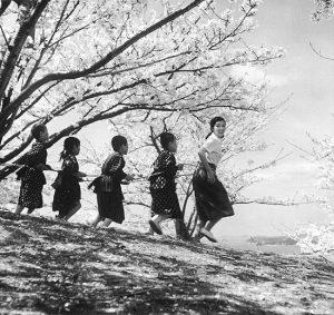 映画「二十四の瞳」のイメージ(1954年)